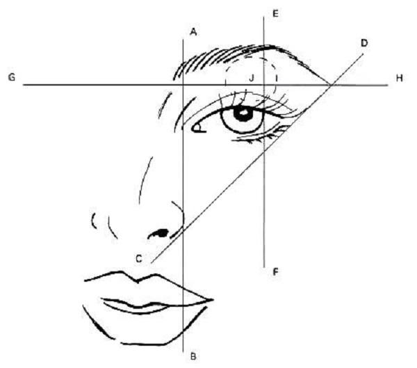 tutorial de cejas
